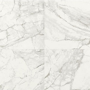 The Luni Blanco is a polished floor tile from TFO. This tile is great for bathrooms, kitchens and any floor tile application in your home or business.